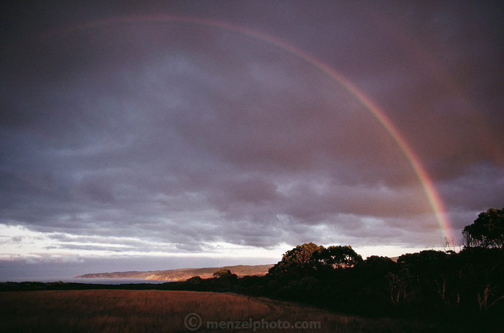Rainbow at sunrise as seen from camp at Dinosaur Cove, Cape Otway, southern Australia.  Dinosaur Cove is the world's first mine developed specifically for paleontology - normally the scientists rely on commercial mining to make the excavations. The site is of particular interest as the fossils found date from about 100 million years ago, when Australia was much closer to the South Pole than today.  [1989]