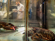 Selective focus of a chef in his restaurant. Lobsters in a tank can be seen in the foreground