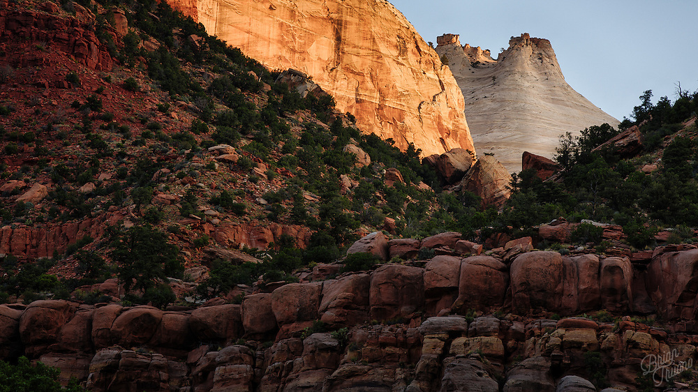 The Beehives of Zion canyon are set along the western side of the towering Sentinel peak. These white navajo sandstone formations line the ridges of the canyon walls like crowns on royalty. From this vantage point we can see multiple types of geological rock layers, from the golden Temple Cap Formation at the top of the Beehives all the way down through the red Moenkopi Formations, spanning over 100 million years of the Mesozoic period's sedimentary layering.