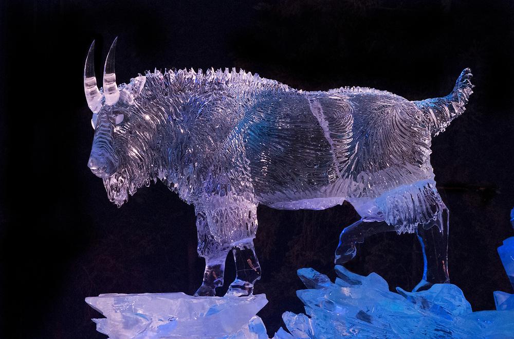 North America; United States; Alaska; Fairbanks; Ice Alaska; Carving; Mountain Goat