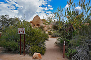 Skull Rock Trail at Joshua Tree National Park California