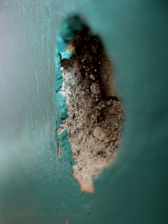 A close-up view of a hole in a crumbling horsehair plaster wall.