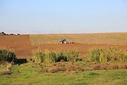 Tractor ploughing hillside field countryside near Vejer de la Fronterra, Cadiz Province, Spain