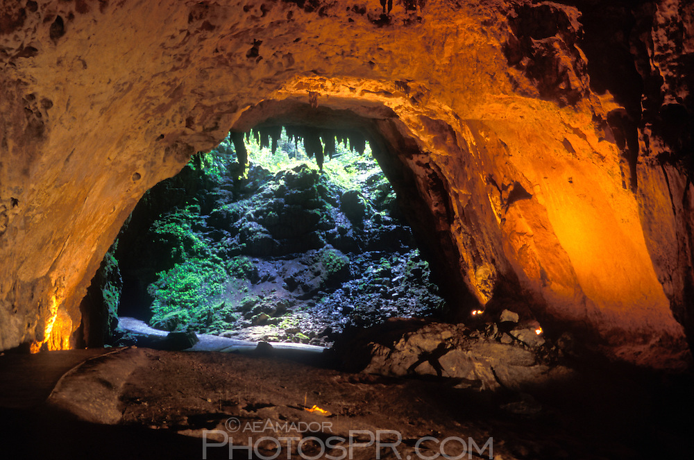 < mixed >Cueva Clara