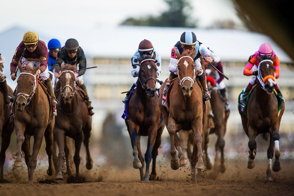 October 30, 2015:  Fillies and Mares race in the Breeders' Cup Distaff at Keeneland Race Track in Lexington, Kentucky. Evers/ESW/CSM