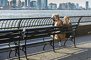 Two buddies by the waterfront on the Battery Park City esplanade