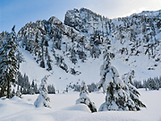 Snow covers trees at frozen Heather Lake beneath Mount Pilchuck (summit 5324 feet) in Mount Pilchuck State Park, Washington, USA. Late February.