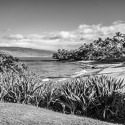 Maui Hawaii Ulua Beach black and white photo in Wailea Makena with Maalaea Bay along the Pacific Ocean. Copyright ⓒ 2019 Paul Velgos with All Rights Reserved.