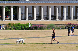 &copy; Licensed to London News Pictures. 01/08/2018<br /> Greenwich, UK. A woman walks her dog through burnt grounds in Greenwich Park in London, as a heatwave is set to return to the UK. Photo credit: Grant Falvey/LNP