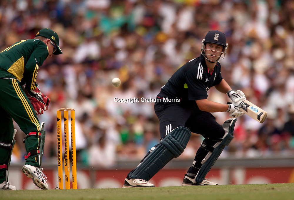 Jonathan Trott bats during the third one day international between Australia and England at the SCG in Sydney, Australia. Photo: Graham Morris (Tel: +44(0)20 8969 4192 Email: sales@cricketpix.com) 23/01/11