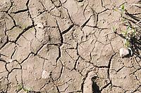 Dry earth on farm in County Wexford Ireland