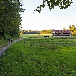 Farm road at Crimson and Clover Farm, Northampton, Massachusetts.