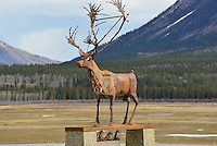 Caribou Commons, Carcross, Yukon
