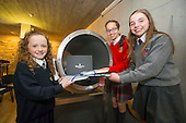 Waterford 1100 Time Capsule