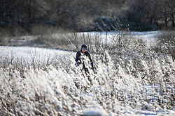 © Licensed to London News Pictures . 23/01/2019. Bolton , UK . A cyclist in the snow in Horrocks Wood . Clear skies and snow shrouds the hills in the North West as fog descends over Manchester City Centre . Photo credit : Joel Goodman/LNP