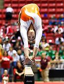 2013 IHSAA Gymnastics State Finals - Muncie, In