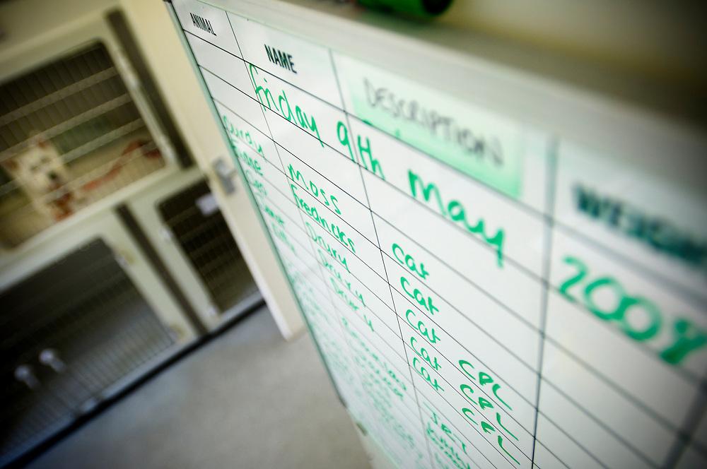 Operating theatre schedule, Arnwood Veterinary Surgery, Nottingham, England, UK.