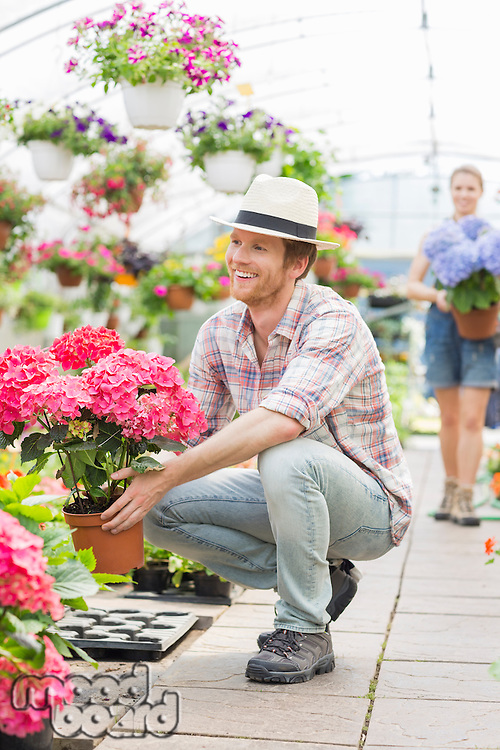 Happy male gardener holding flower pot with colleague standing in background at greenhouse