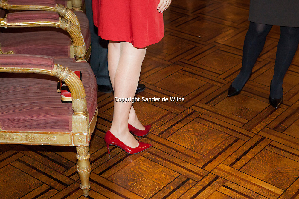 2012-01-12, Brussels, Belgium. The Belgian Royal family gave a newyears drink in the palace for all ambassadors. In this picture: Princess Matahilde wears red shoes.