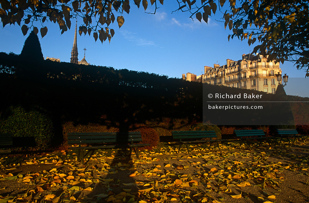 Near the Quai aux Fleurs, Notre Dame's steeple, long shadows and autumn leaves on the Isle de France, behind Paris' cathedral.