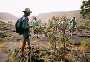 Hiking, Hawaii Volcanoes National Park, Island of Hawaii