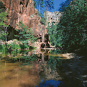 Red rock cliffs reflected in the West Fork of Oak Creek in Oak Creek Canyon near Sedona, Arizona