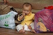 Beijing Zoo. Baby.