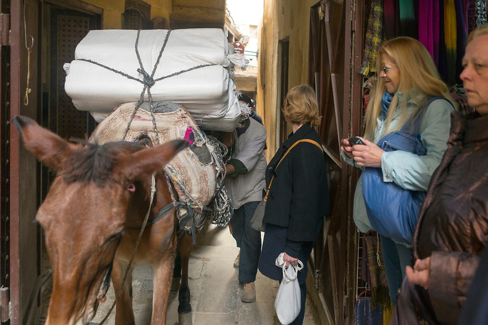 Fez, Morocco - 5th MARCH 2016 - Tourists step aside for donkeys, horses and mules transporting goods to pass by while shopping in the souks of the old Fez Medina, Middle Atlas Mountains, Morocco.