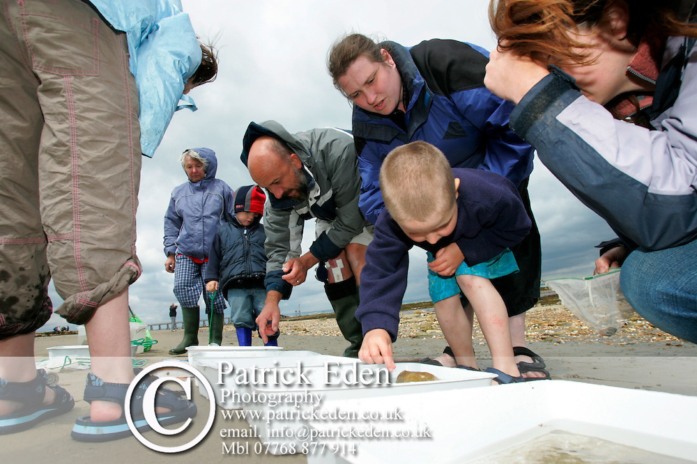 Ian Boyd, Naturalist, talking about the fauna and flora collected by walkers at Bembridge Beach