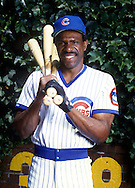 CHICAGO - 1988:  Major League Baseball Hall of Famer Andre Dawson poses for a photo next the the ivy prior to an MLB game at Wrigley Field in Chicago, IL during the 1988 season. (Photo by Ron Vesely)