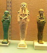 Shawabtis from the tomb of a courtier found at Sakkara. 26th Dynasty 570 - 526 BC.