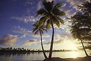 Tetiaroa (Marlon Brando's Island) French Polynesia<br />