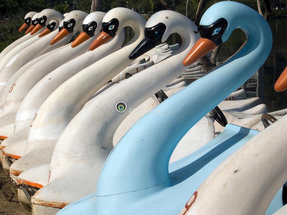 Rio de Janeiro; RJ; Brasil     06/Agosto/2005.Lagoa Rodrigo de Freitas, area de lazer. Pedalinhos, em forma de cisnes / Swan boats at Rodrigo de Freitas's Lake.Foto Marcos Issa/Argosfoto