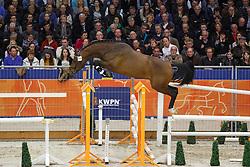 226 - Giorgio<br /> KWPN Stallion Selection - 's Hertogenbosch 2014<br /> © Dirk Caremans