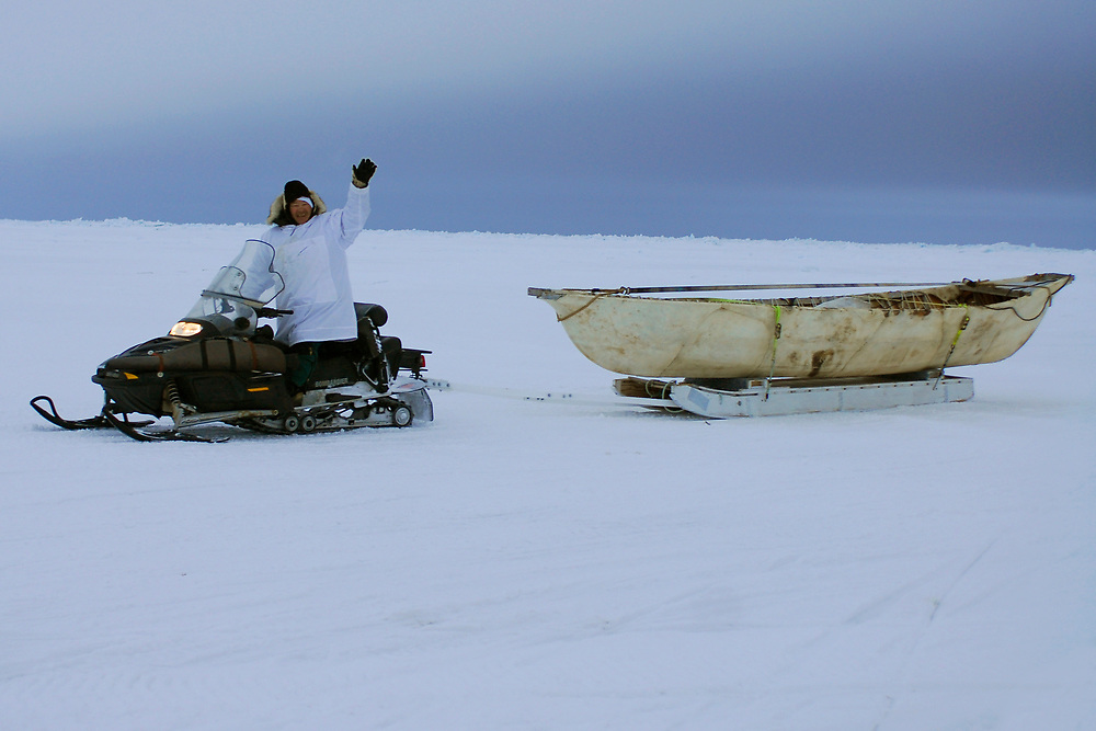 Alaska, Barrow. April 2007. Spring whaling. Aalak Crew (Eugene Brower Crew) on the ice. Captain Eugene Brower tows the umiaq.