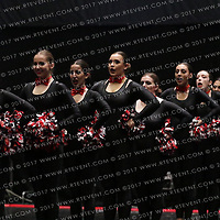 2042_Edinburgh Napier Panthers - Pom
