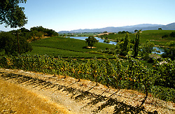 CA, Napa Valley Vineyard, Quintessa  .Photo: canapa102..Photo copyright: Lee Foster, 510-549-2202, lee@fostertravel.com, www.fostertravel.com