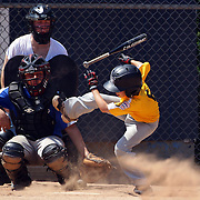 A young batter avoids a wild pitch during the Norwalk Little League baseball competition at Broad River Fields,  Norwalk, Connecticut. USA. Photo Tim Clayton