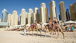 Tourists riding camel on beach at JBR Jumeirah Beach Residences in Marina district of Dubai United Arab Emirates