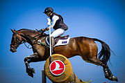 Samantha BIRCH (AUS) riding Hunter Valley II during the World Equestrian Festival, CHIO of Aachen 2018, on July 13th to 22th, 2018 at Aachen - Aix la Chapelle, Germany - Photo Christophe Bricot / ProSportsImages / DPPI