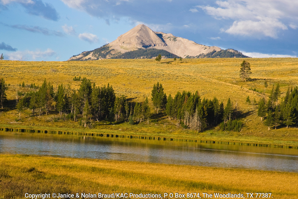 Grasslands Meadow and Gallatin Mountain Range in Yellowstone National Park in Wyoming