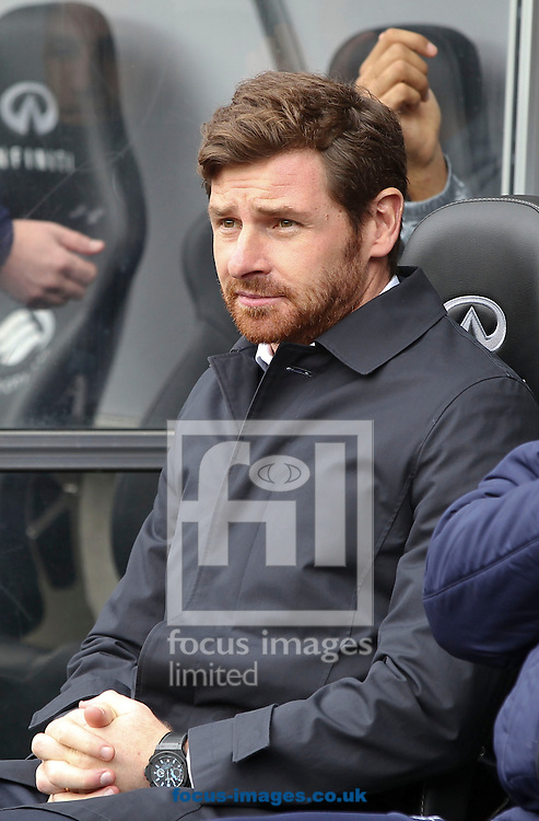 Picture by Mike  Griffiths/Focus Images Ltd +44 7766 223933.30/03/2013.Andre Villas-Boas of Tottenham Hotspur during the Barclays Premier League match against Swansea City at the Liberty Stadium, Swansea.