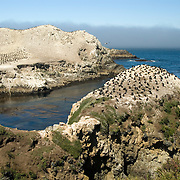 Point Lobos, California