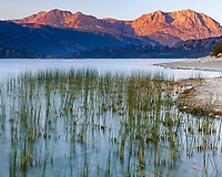 https://Duncan.co/grasses-and-morning-light-at-june-lake