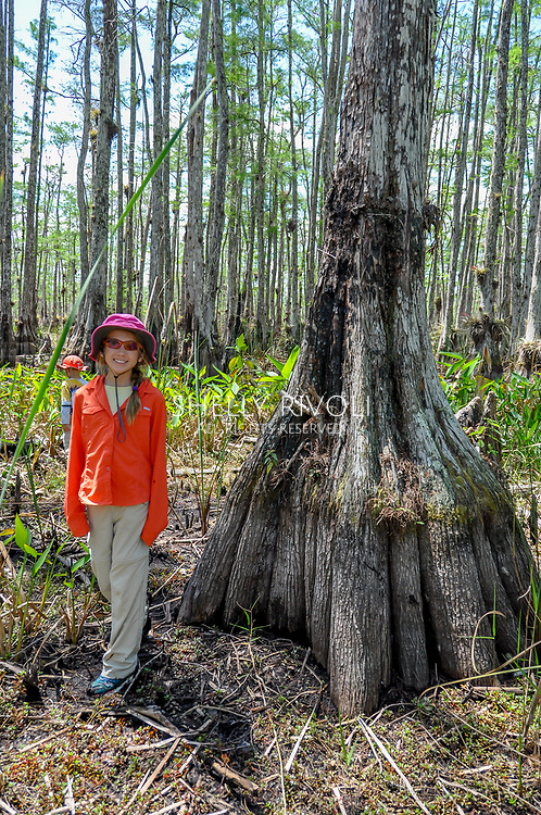 A girl stands beside a wide-hipped cypress in Big Cypress National Preserve. Model released.