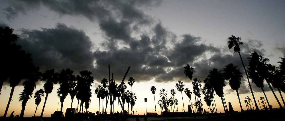 Dec 22, 2009 - Venice, California, USA -  Palm trees at sunset at world famous Venice Beach .