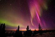 Aurora Borealis in Purple