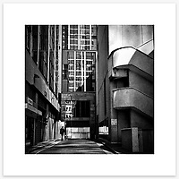 &quot;Into The Jungle&quot;, Lees Ct, Sydney. From the Ephemeral Sydney street series.<br />
