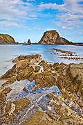 Catlins coastline exposed by low tide, New Zealand