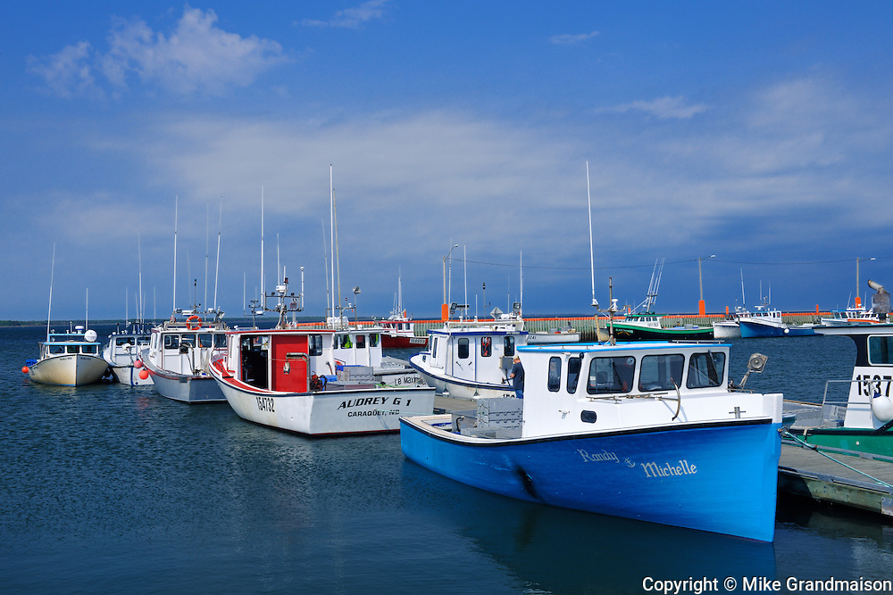 Fishing boats<br /> 